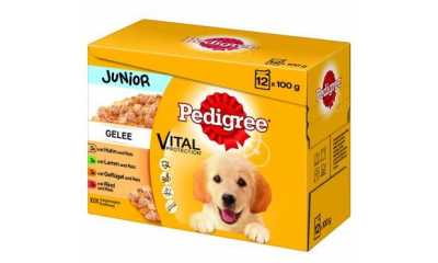 Pedigree 12x100g-os JUNIOR