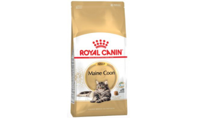 Royal C c. Maine Coon Adult 4kg