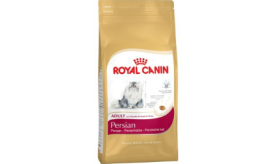 Royal C c. Persian Adult 4kg