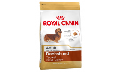 Royal C k. Dachshund Adult 0,5kg