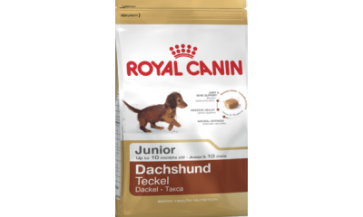 Royal C k. Dachshund Junior 500g