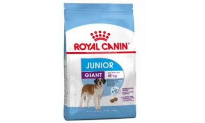 Royal C k. Giant Junior 3.5kg