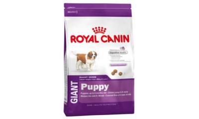 Royal C k. Giant Puppy 3.5kg