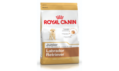 Royal C k. Labrador Retriever Junior 3 kg
