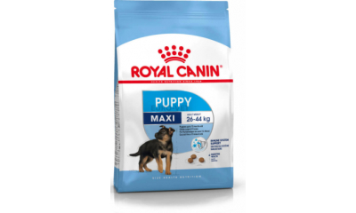 Royal C k. Maxi Puppy 4kg