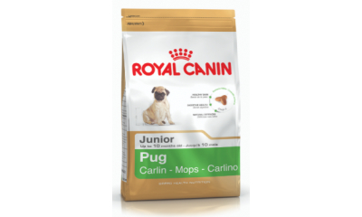 Royal C k. Pug Junior 500 g