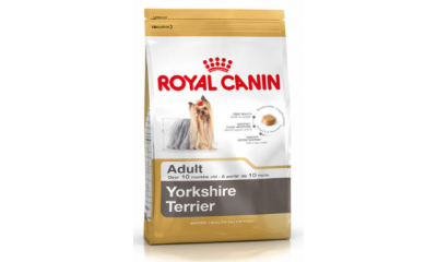 Royal C k. York.Terrier Adult 0,5kg