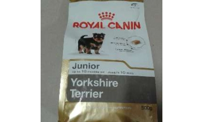 Royal C k. York.Terrier Junior 0,5kg